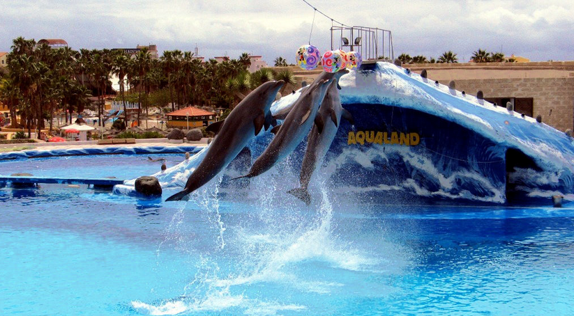 турция аквапарк акваленд