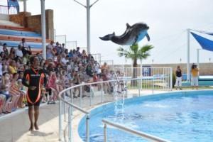 Дельфинарий Sealanya Dolphinpark