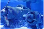 akvarium antaliya