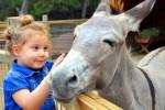 анталия зоопарк турция