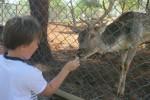 antalya-zoo