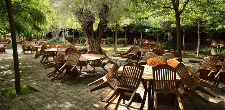 Ресторан в клубе Orfe
