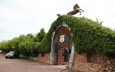 Конный клуб в Анталии Orfe